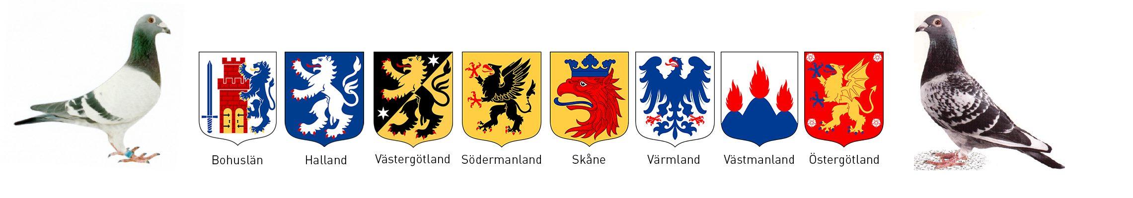 Västsvenska Brevduveförbundet